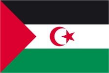 Resultado de imagen para bandera sahara occidental